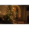 Christbaum (1)<div class='url' style='display:none;'>/</div><div class='dom' style='display:none;'>evang-waengi.ch/</div><div class='aid' style='display:none;'>265</div><div class='bid' style='display:none;'>4652</div><div class='usr' style='display:none;'>9</div>